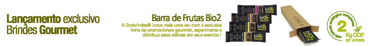 TI_BARRA_DE_FRUTAS